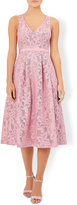 Monsoon Delphinium Lace Dress