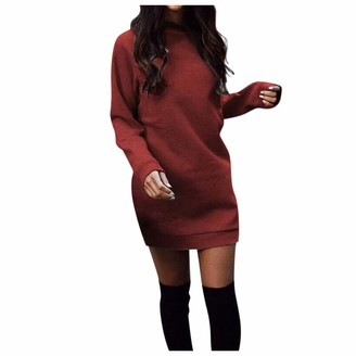 YBWZH Ladies Winter Sweaters Dress for Women Turtleneck Long Sleeve Chunky Knitted Jumper Long Sweatshirt Warm Pullover Tops Blouse (Wine Red M)