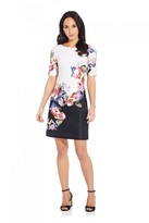 Adrianna Papell Rose Printed A-Line Dress