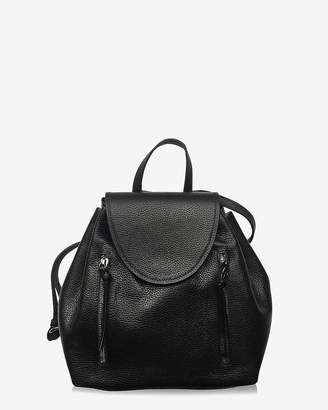 Express Joanna Maxham Leather High Line Backpack