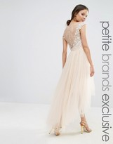 Chi Chi Petite Chi Chi London Petite Lace Scallop Back High Low Midi Dress With Tulle Skirt