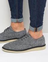 Toms Brogue Shoes