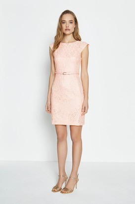 Coast Lace Belted Cap Sleeve Dress
