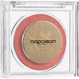 Napoleon Perdis Color Disc
