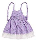 Sunfei Girl Lace Baby Princess Sleeveless Dress Party Wedding Tutu Dress (110, Purple)