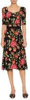 Dolce & Gabbana Rose-Print Sweetheart A-Line Dress, Black