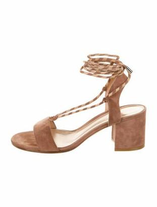 Gianvito Rossi Suede Gladiator Sandals Pink