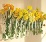Simple Wall-Mount Vase, Set of 2