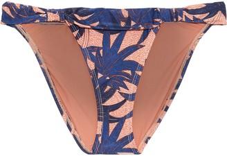 Vix Paula Hermanny Paradise Bia Knotted Printed Low-rise Bikini Briefs