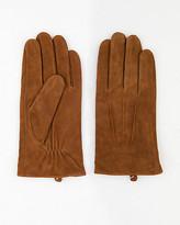 Le Château Suede Gloves