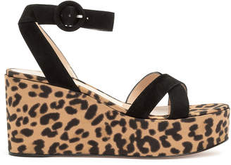 Gianvito Rossi Black suede leopard wedges