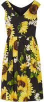Dolce & Gabbana Floral-print Cotton-poplin Dress - IT42