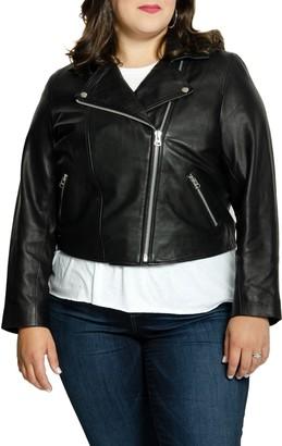 All 67 Lifetime Leather Moto Jacket