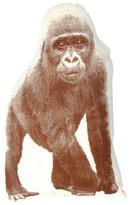 Areaware Gorilla Cushion