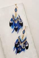 Gas Bijoux Quetzal Beaded Earrings