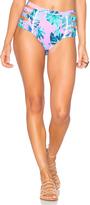6 Shore Road Chloe Bikini Bottoms