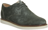 Pointer Crago Lace Up Shoes