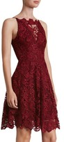 Dress the Population Women's 'Hayden' Lace Fit & Flare Dress