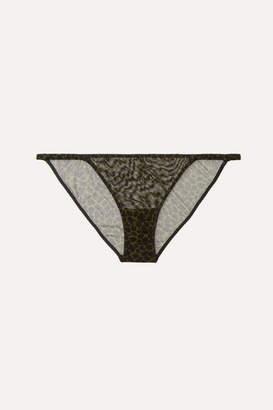 Love Stories - Rosie Embroidered Leopard-print Stretch-tulle Briefs - Black