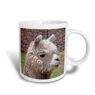 3drose 3dRose Peru. Alpaca wildlife, Awana Kancha, Urubamba Valley - SA17 KWI0128 - Kymri Wilt, Ceramic Mug, 11-ounce
