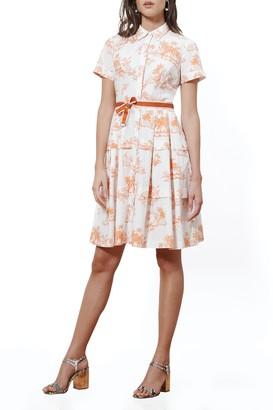 Donna Morgan Short Sleeve Belted Poplin Shirt Dress (Petite)