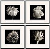 Pottery Barn Flower Black & White Framed Print