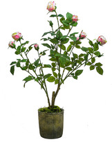 SIA Potted Roses - Light Pink