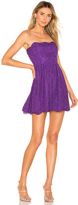 NBD Daimilee Dress