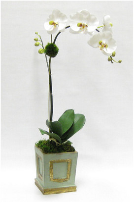 Bougainvillea Two Spike Artificial Orchid In Small Wooden Square Container