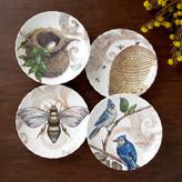 Birch Lane Decorative Nest & Hive Plates