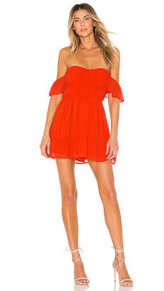 Lovers + Friends Carson Mini Dress
