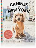 Simon & Schuster Canines Of New York