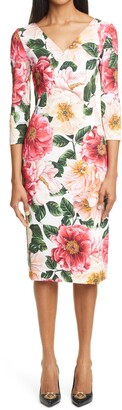 Dolce & Gabbana Camellia Print Stretch Cady Sheath Dress