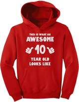 TeeStars - This Is What an Awesome 10 Year Old Looks Like Youth Hoodie