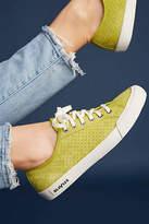 SeaVees Monterey Varsity Sneakers