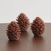 Crate & Barrel Mini Pinecone Candles, Set of 3