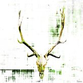 Parvez Taj Antler UV Ink Canvas Artwork