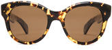 Oliver Peoples Jacey Polarized Sunglasses in Dark Tortoise Brown