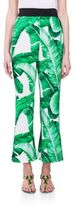 Dolce & Gabbana Cady Cropped Printed Pants