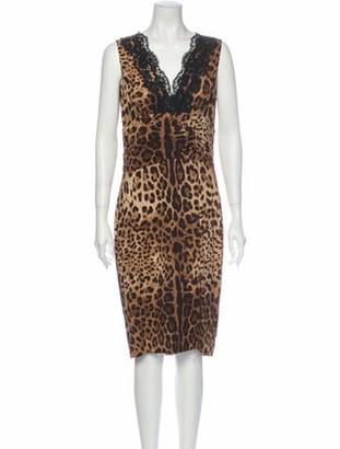 Dolce & Gabbana Animal Print Midi Length Dress Brown