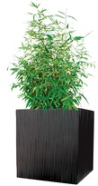 Modern Outdoor - Kenji Planter