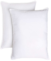 Memory Filled Pillows (Set of 2)