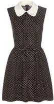 Miu Miu Cotton and wool-blend dress