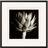Pottery Barn Flower Black & White Framed Print