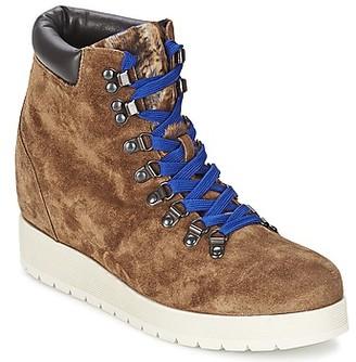 Alberto Gozzi VELOUR MARRONE women's Low Ankle Boots in Brown