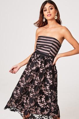 Little Mistress Elly Floral And Stripe Organza Midi Skater Dress