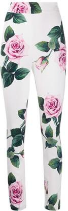 Dolce & Gabbana Tropical Rose Print Leggings