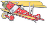 Reinaldo Lourenço airplane brooch