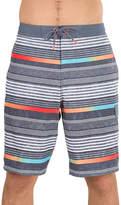 Speedo Stripe Board Shorts