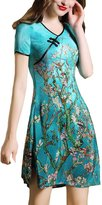 Aoibox Women's A-line Retro Printing Cheongsam V-neck Qipao Dress